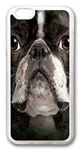 Big Face Boston Terrier Custom For Iphone 6 4.7 Inch Case Cover Hard shell Transparent
