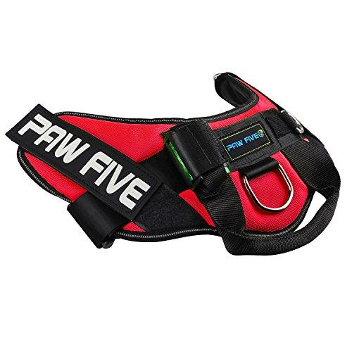 51E1M71lR1L. SS500  - Paw Five CORE-1 Reflective No-Pull Dog Harness