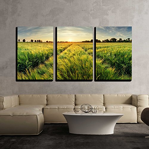 wall26 - 3 Piece Canvas Wall Art - Rural Landscape with Wheat Field on Sunset - Modern Home Decor Stretched and Framed Ready to Hang - 24