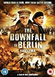 The Downfall Of Berlin - Anonyma