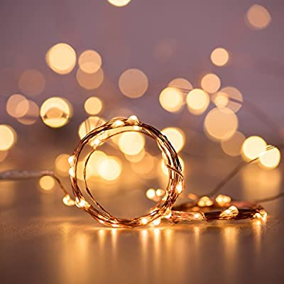 String Lights, Decornova 19.7ft 60 LEDs IP44 Waterproof Super Bright Copper Wire Rope Lights with Timer for Home Bedroom Party Tree, 3AA Battery Case, Warm White