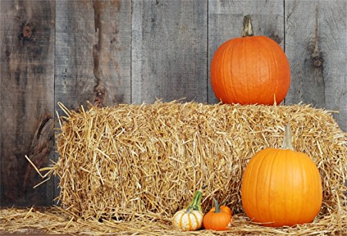 AOFOTO 7x5ft Autumn Harvest Pumpkins Farm Straw Countryside Background Baby Child Cart Truck Scarecrow Photography Backdrop Kid Adult Artistic Portrait Photo Studio Props Video Drape Wallpaper