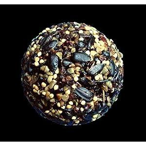 Songbird Essentials SE949 Birdseed Ball for Ball Bird Feeder (Pack of 5) 111