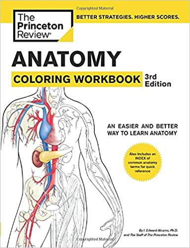 Download e books heads features and faces dover anatomy for anatomy coloring workbook 3rd edition coloring workbooks fandeluxe Choice Image