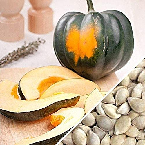Acorn or Table Queen Squash Seeds [100 - Seeds]