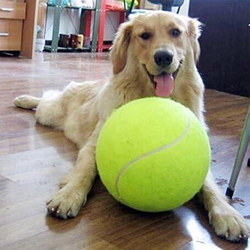 9.5 inch Giant Perros juguete pelotas resistente Pet pelota de ...