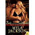 Boots and the Heartbreaker (Ugly Stick Saloon Series Book 11)