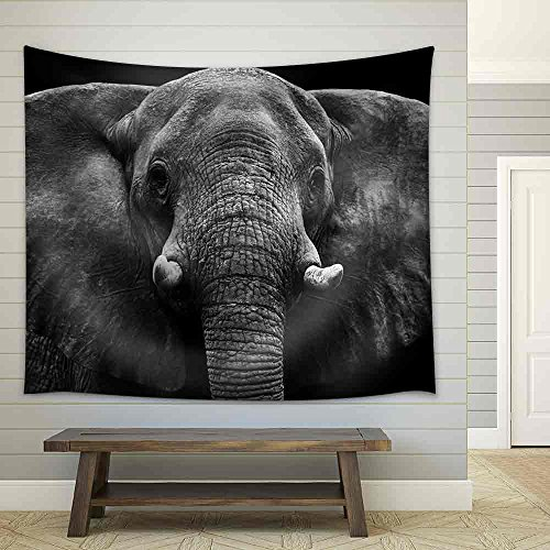Elephant Fabric Wall