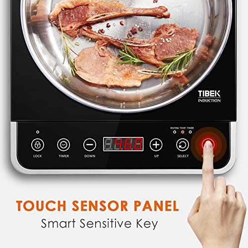 Buy portable induction cooktop reviews