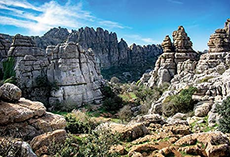 OERJU 10x8ft Spain Torcal Backdrop Huge Stones of Different Shapes Weeds Spring Up Photography Background Holiday Vacation Boys Girls Adults Artistic Portrait Photo Studio Props Vinyl Wallpaper