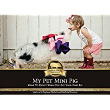 My Pet Mini Pig: What to Expect When You Get Your First Pig