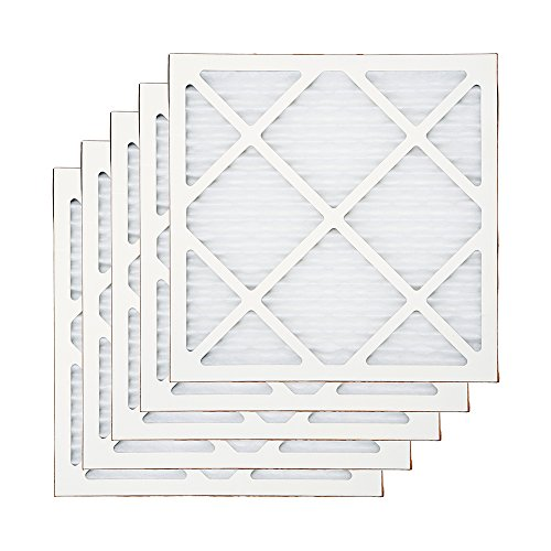 B-Air Air Scrubber Stage 1 Pre Filter 5 Pack for Air Purifiers Negative Air Machine, Water Damage Restoration Equipment, Mold Remediation, Construction Debris