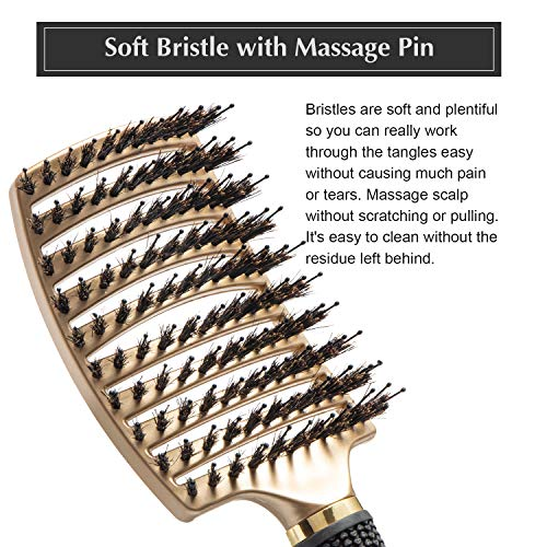 FIXBODY Boar Bristle Hair Brush - Curved & Vented & Oversize Design Detangling Hair Brush for Women Long, Thick, Curly and Tangled Hair Blow Dryer Brush (Gold)