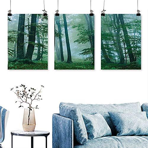(SCOCICI1588 3-Piece Triptych Foggy Forest Magical Hazy Habitat Woodland Mist Serene Jungle Photo Green for Wall Decor Home Decoration No Frame 30 INCH X 47 INCH X 3PCS)