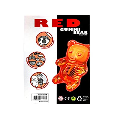 Fame Master Red Gummi Bear Anatomy Model: Toys & Games