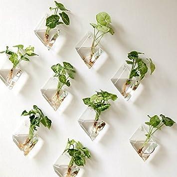 deco plante murale cool deco plante murale with deco plante murale plante deco plante meuble. Black Bedroom Furniture Sets. Home Design Ideas