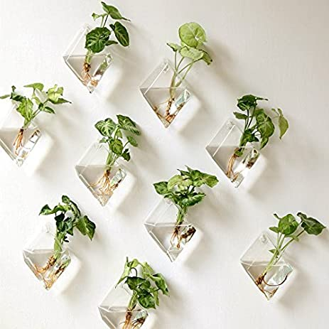 Geekercity Wall Hanging Planters Terrarium Glass Plant Water Plant  Containers Pots Air Plant Bowl Flower Vase
