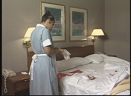 Controlling Exposures To Bloodborne Pathogens (Hotel/Motel) Safety Training DVD by Digital 2000 (Image #1)