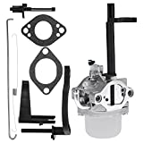 USA Premium Store New Carburetor for Briggs & Stratton 698305 793778 Nikki Snowblower Snow Blower