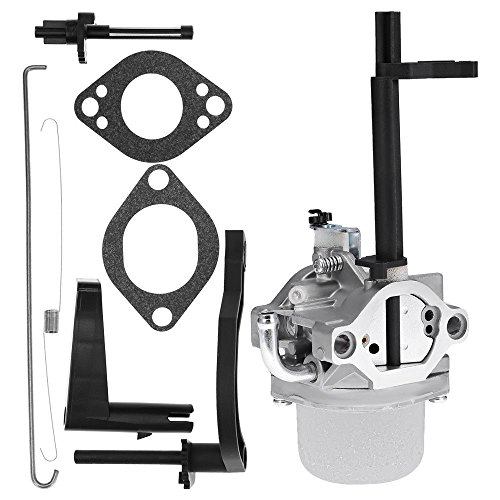 USA Premium Store New Carburetor for Briggs & Stratton 698305 793778 Nikki Snowblower Snow Blower by Unknown