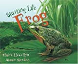 Frog, Claire Llewellyn, 1559718692