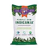 Purple Cow IndiCanja 1 Cubic Foot Bag Organic