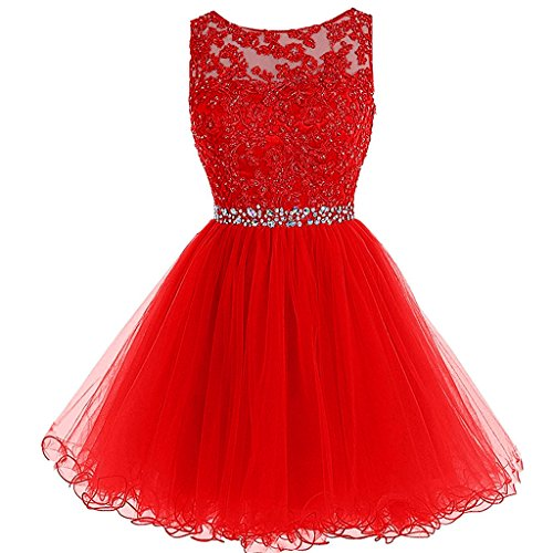 Aiyi Sheer Bateau Beaded Lace Tulle Short Prom Homecoming Dresses Plus Size Red US 16W by Aiyi