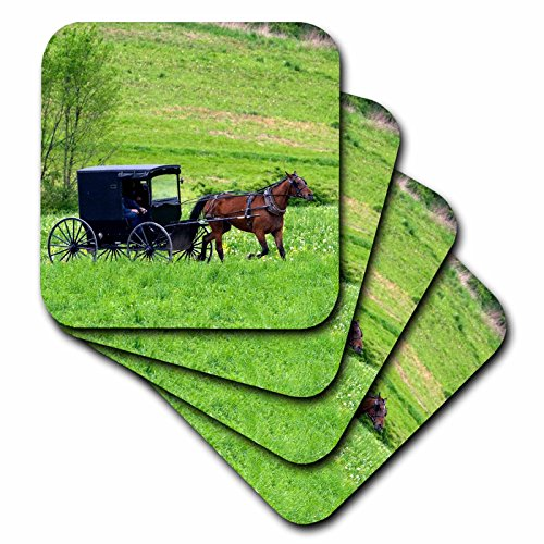 Amish Horse Buggy - 3dRose cst_93371_2 Amish Farm with Horse Buggy Near Berlin, Ohio US36 DFR0018 David R. Frazier Soft Coasters, Set of 8