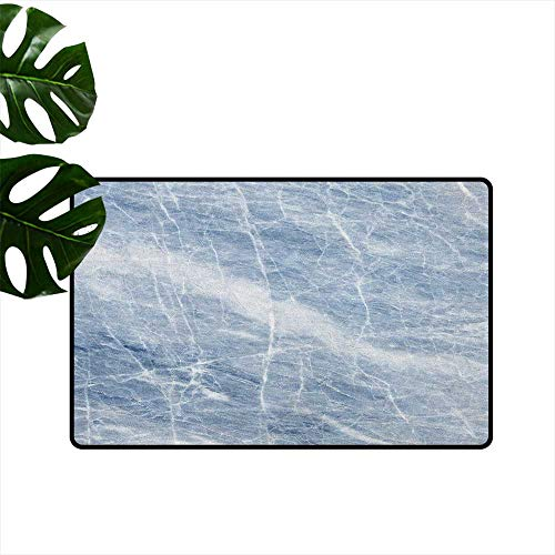 (RenteriaDecor Marble,Custom Door mats Pale Blue Marble Pattern with White Cracks on its Surface Geography Stone 24