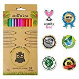 Eco Friendly Quality Artist Colored Pencils Set 24 - Soft Lead - Pre-Sharpened - Bright Assorted Eco Colored Pencils - For Kids, Classroom, Drawing, Sketching, Shading and Adult Coloring Books