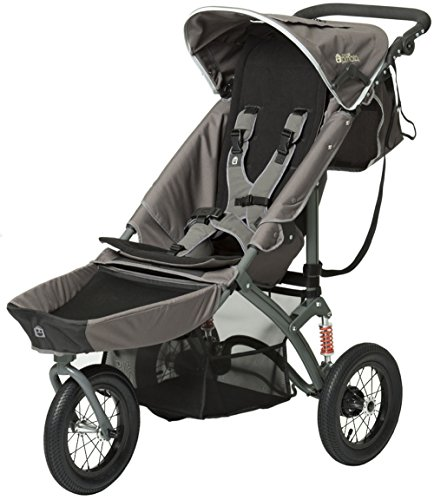 Adaptive Strollers For Special Needs - 9