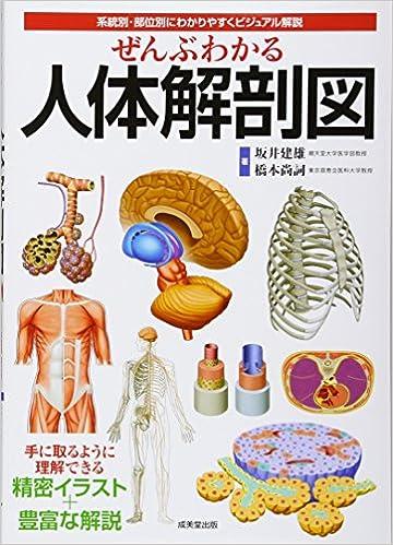 本 解剖 学