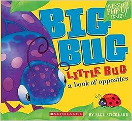 Image result for big bug little bug book