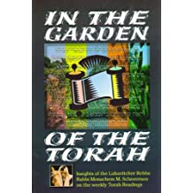 In the Garden of the Torah: Volume II (English Edition)