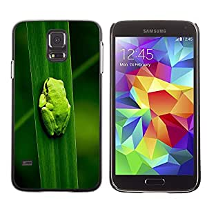 Plastic Shell Protective Case Cover || Samsung Galaxy S5 || Baby Frog Leaf Nature Tropical Forest @XPTECH
