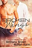 Broken Wings, Ashlyn Kane and Bethany Brown, 1615819703