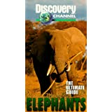 Ultimate Guide: Elephants