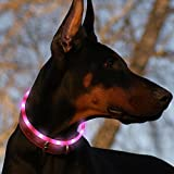Led Dog Collar USB Rechargeable Glowing Pet Safety...