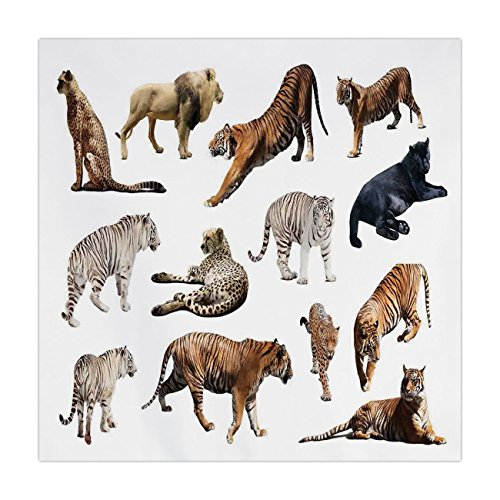 (Satin Square Tablecloth,Safari Decor,Collection of Tigersand other Big Wild Cats Predatory Feline Zoo Lying Standing Background,Dining Room Kitchen Table Cloth Cover)