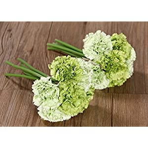 Nument(TM Silk Artificial Carnation Flowers Real Touch Flowers 2 Bouquets for Wedding Bridal Bridesmaid Home Decoration (Green) 47