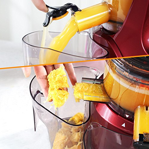 SKG New Generation Wide Chute Slow Masticating Juicer