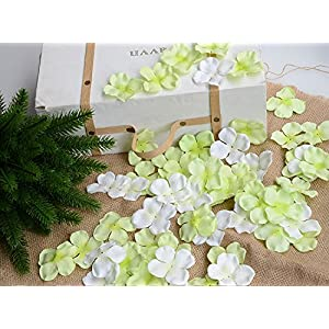 Hydrangea Petals Artificial Silk Pincushion Petal Flower Bridal Shower Favors for Wedding Party Supplies Table Floor Decoration Centerpieces Confetti (170, Tiffany Blue) 4