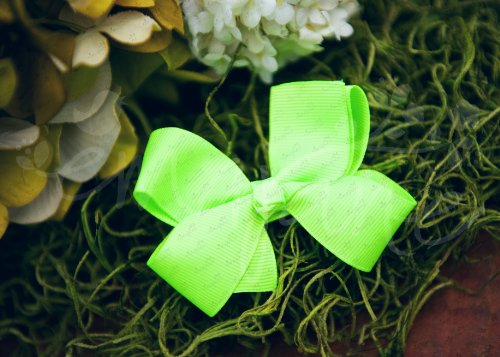 Ema Jane - Neon Grosgrain Hair Bow Clips (15 Pack)