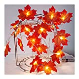 Meliya 40 LED Maple Leaf Fairy String Lights Waterproof Battery Powered Curtain Indoor/Outdoor Decorative Lighting,4m