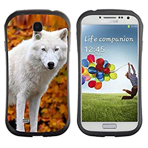 "Pulsar iFace Series Tpu silicona Carcasa Funda Case para SAMSUNG Galaxy S4 IV / i9500 / i9515 / i9505G / SGH-i337 , White Wolf hojas de otoño amarillo perro salvaje"""