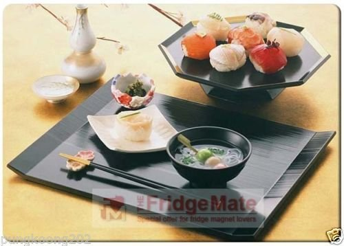 Soup Magnet (Sushi and Soup fridge magnet.3