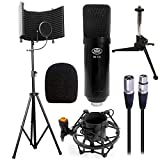 AxcessAbles SF-101KIT Studio Microphone Isolation