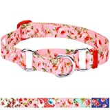 Blueberry Pet 6 Patterns Spring Scent Inspired Rose Print Safety Training Martingale Dog Collar, Baby Pink, Large, Heavy Duty Adjustable Collars for Dogs