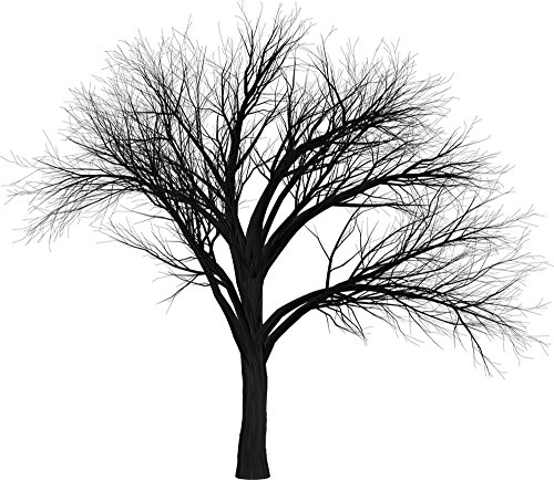 Gifts Delight Laminated 27x24 inches Poster: Tree Branch Empty Isolated Black Spooky Halloween Creepy Nature Tree Branch Silhouette Scary Seasonal Trunk Environment Autumn Winter No Leaves Bare Fall -