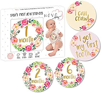 db215f68cf32 Amazon.com   Baby Girl Monthly Milestone Stickers